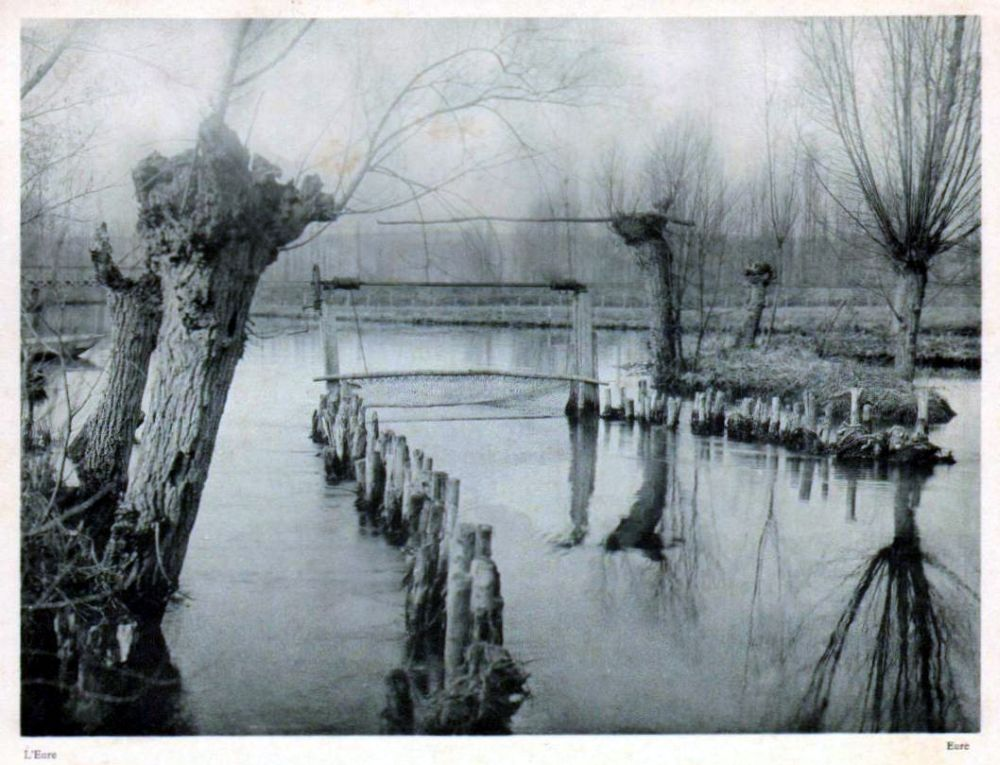 In a river bordered by trees that have lost their leaves, two parallel rows of short posts form a passageway that is closed off at the end by a net. Black and white photograph.