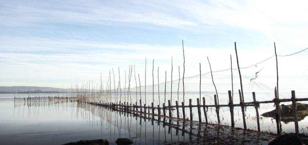 A long eel weir made of nets attached to poles is reflected in the river.