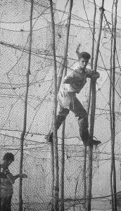 Roughly 3 m above the ground, a man balances on poles between two rows of fishing nets held in a vertical position by long poles. Black and white photograph.