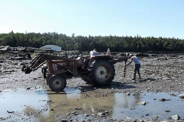 A tractor equipped with an augur sits on the shore of the river. The driver watches another man guide the augur, which is hitched to the back of the tractor, toward the ground.