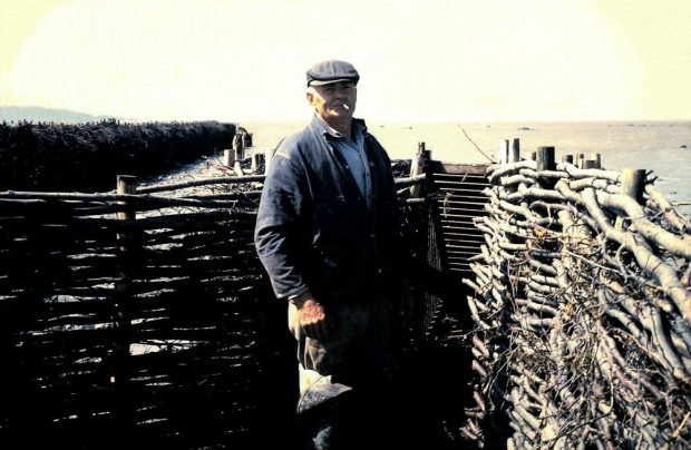 A man wearing work clothes and a cap stands with a cigarette in his mouth inside what seems to be an enclosure formed by two barriers of branches that meet at the opening of a wooden container. The barriers come up to his shoulders. The river can be seen in the background along with another barrier of branches extending into the water.