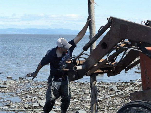 A man dressed in work clothes holds a post being driven into the ground on the shore of the river using a tractor.
