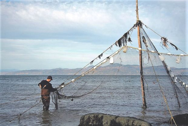 A man wearing boot-foot waders stands in the river holding the bottom of a fishing net that is attached to the top of a post measuring 6 m high.