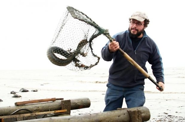 An eel fisher holds a large net attached to a rigid frame with a handle, containing an eel. The top of a large wooden collecting box can be seen at the bottom of the photograph.