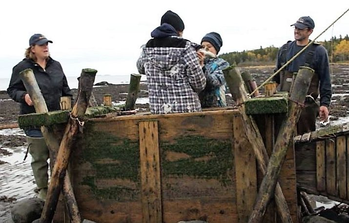 A young girl and a boy stand in a wooden box used to hold eels captive. They are holding an eel in their hands. Their parents stand nearby and smile as they watch them.