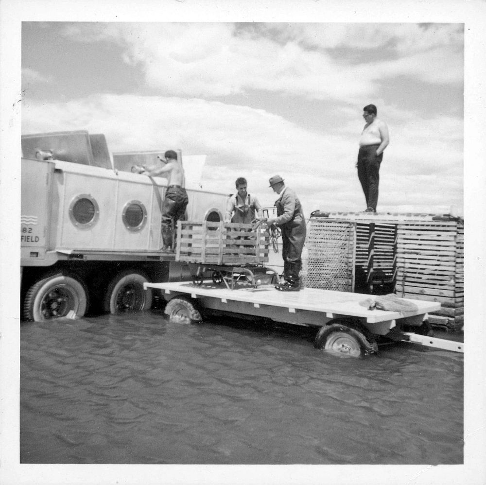 Tank truck for transporting live fish, equipped with porthole-shaped windows and hatches in the roof of the tank. The truck is sitting in water up to its axles. A man has climbed onto the side of the truck and is looking inside one of the hatches. Two other men stand next to him on a trailer. A fourth man observes the scene while standing on top of a very large collecting box of an eel trap. Black and white photograph.
