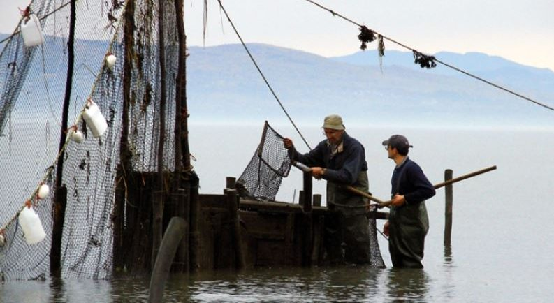 Two men stand in the river next to a wooden box used to hold eels captive in the weir. They have water up to their knees and are holding a net mounted on a square frame with a long handle. Fishing nets can be seen in front of the box, and mountains in the background.
