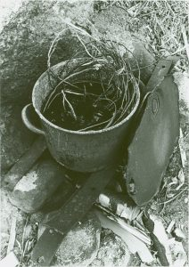 Black and white photo, preparing to soften spruce roots. The roots soak in a pot of water that sits on a rock.
