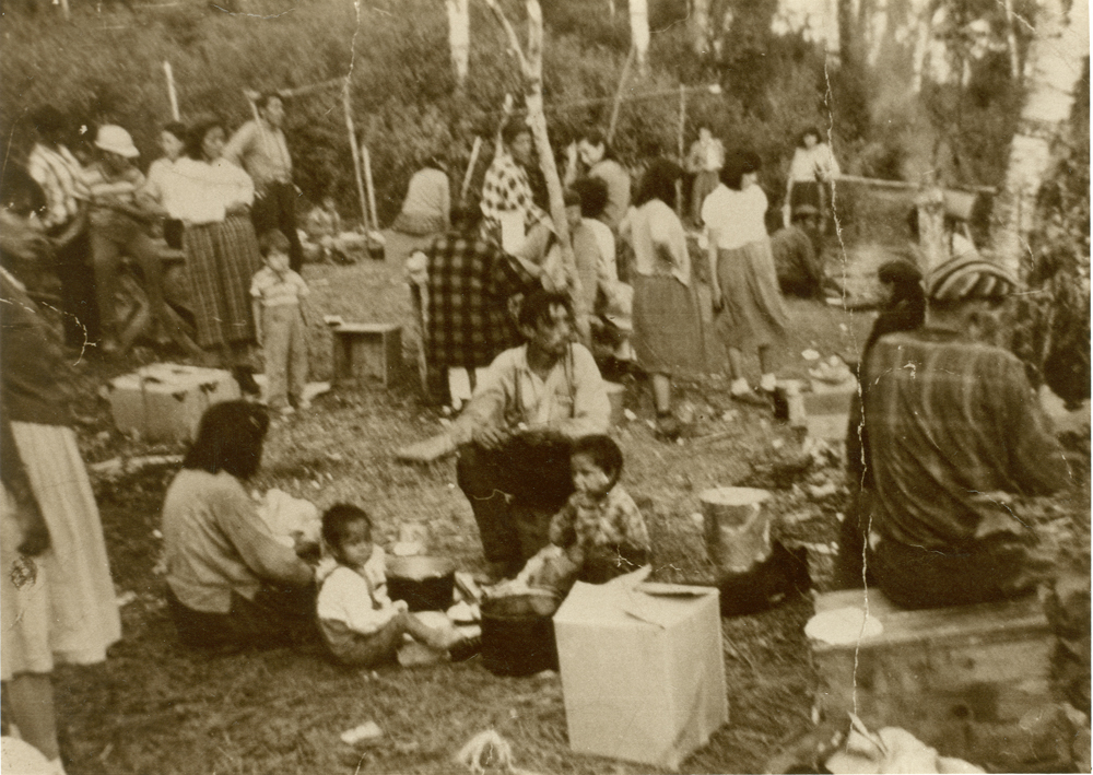 Sepia-toned photo, several Aboriginal families are gathered to share a meal in the great outdoors