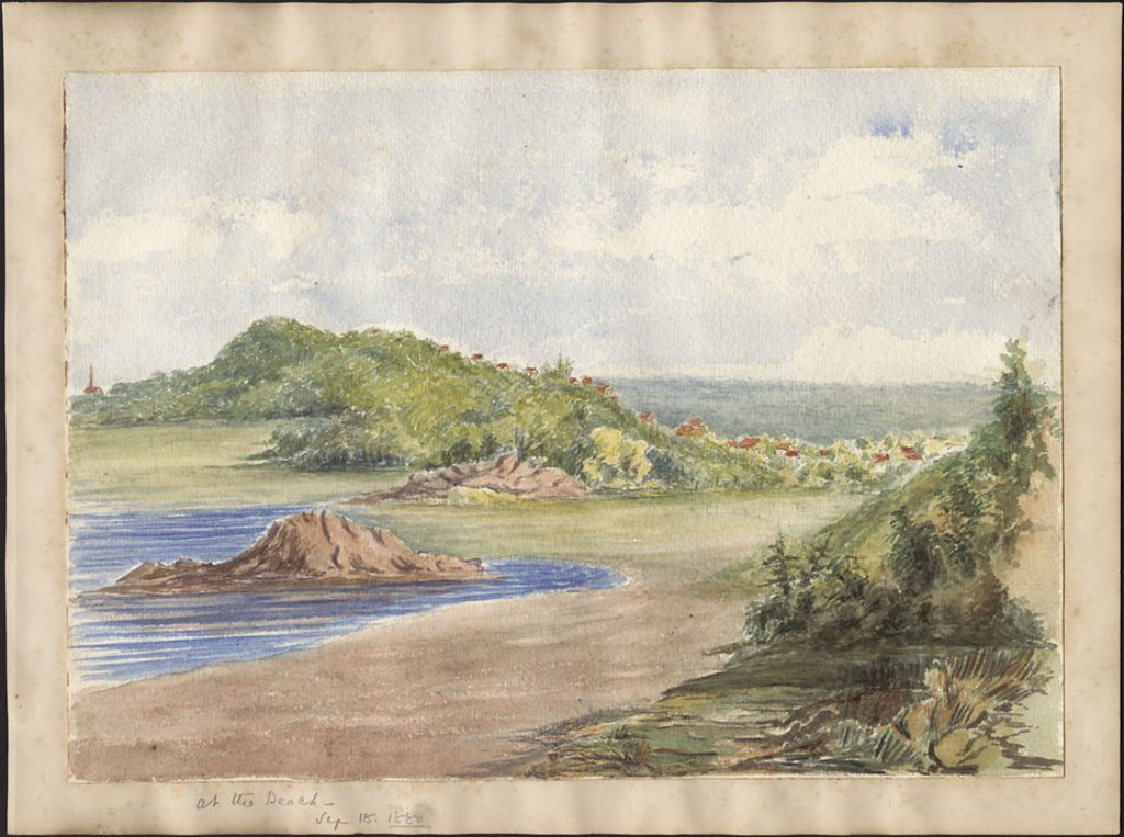 A watercolour image of a gentle shoreline scene, with a little water lifting upon a crescent-shaped beach, some vegetation in the foreground and what might be flowers visible amongst the vegetation in the background.