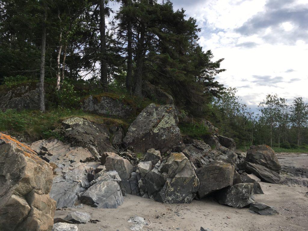 Une photo couleur d'une plage ne montrant pas son plan d'eau; à gauche, un escarpement rocheux parsemé d'épinettes et de pins; au centre, de gros rochers carrés qui semblent s'être déposés sous l'action des eaux glacières. En avant-plan à droite, une berge de sable sur terrain plat parsemée de dépôts d'algues séchées, de brindilles et de coquillages, suggérant que la marée a façonné le paysage qui nous apparait sous un ciel lumineux.