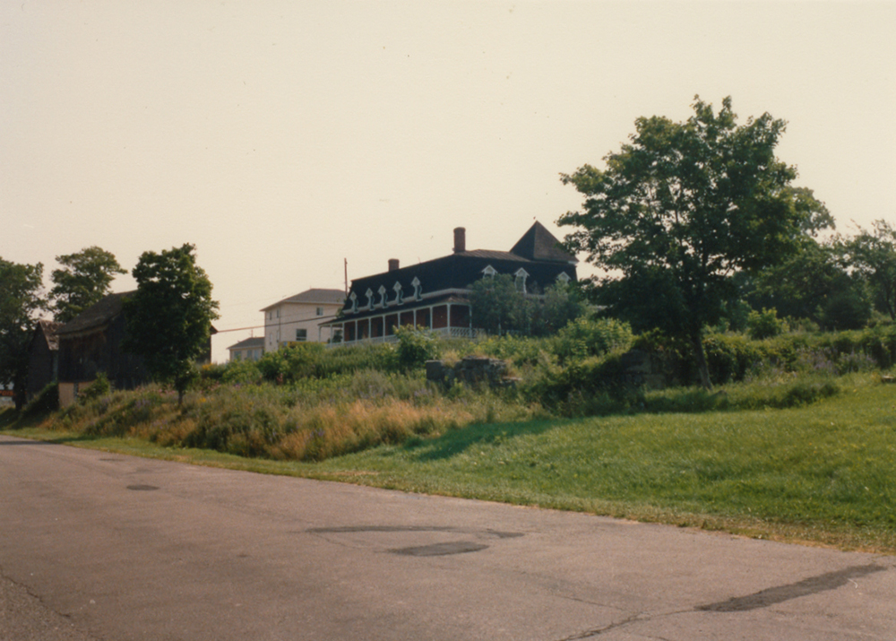 Colour photograph of an overgrown front yard with a few mature trees. A large residence is in the background.