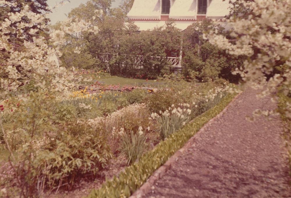 Photo couleur. Jardin fleuri avec une maison en arrière-plan.