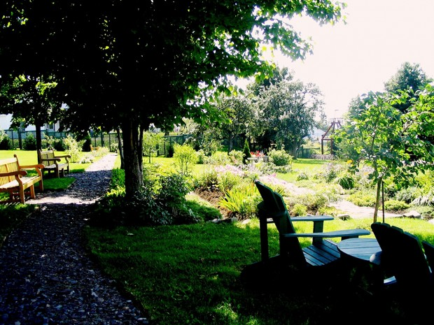 Colour photograph of the gardens of the Manoir in bloom, with many trees.