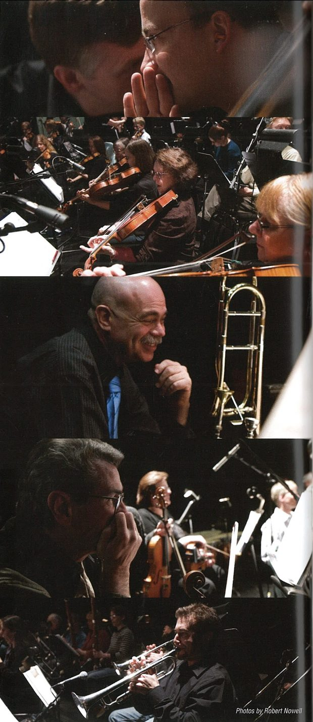 collage of musicians during concerts