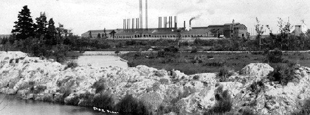 Steel plant with smoke stacks in the background. Shrubs in front of the St. Mary's River in the foreground.