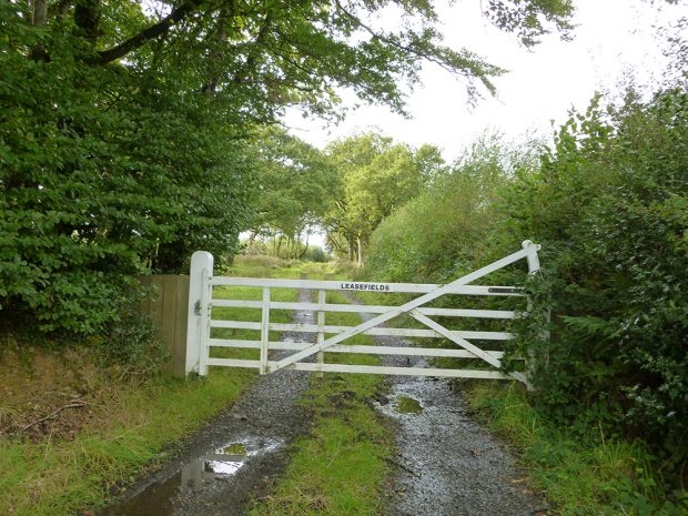 "A large closed white wooden gate with ""Leasefields"" written on it sits in the foreground. The gate is blocking the pathway of a gravel country road that runs through a wooded area."