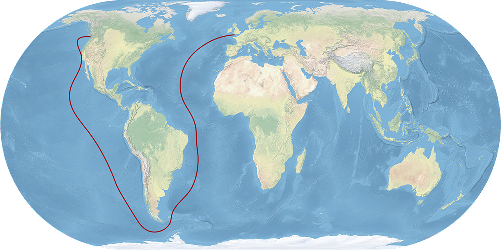 A horizontal capsule shaped map of the world that has a red line illustrating the voyage path of the Tynemouth. A line starts from south England, goes across the Atlantic Ocean and around the southern tip of South America, leading north through the Pacific Ocean to Vancouver Island.