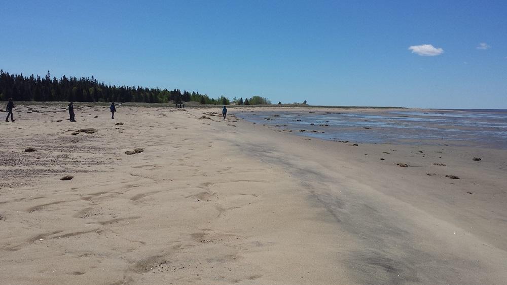 Un groupe de bénévole au loin sur la plage