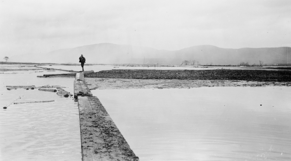 A man is standing on a boom in the middle of the misty waters of the Saint-Maurice.