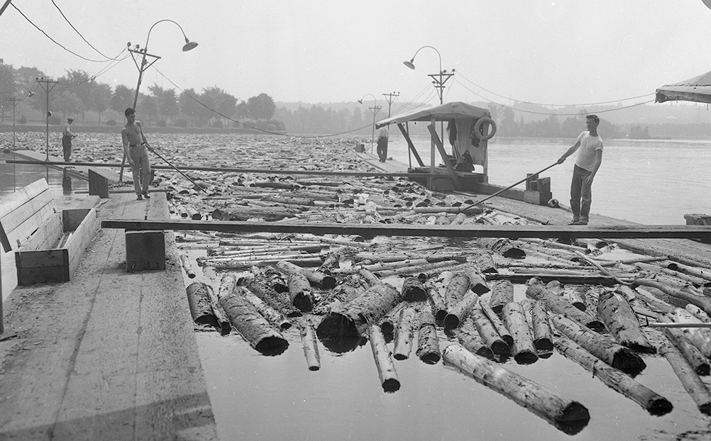 Standing on booms, drivers sort the many logs on the river with poles.