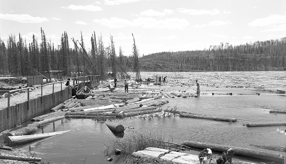 On a lake in the middle of the forest, men guide the logs to an opening in the middle of a dam made of earth and wood.