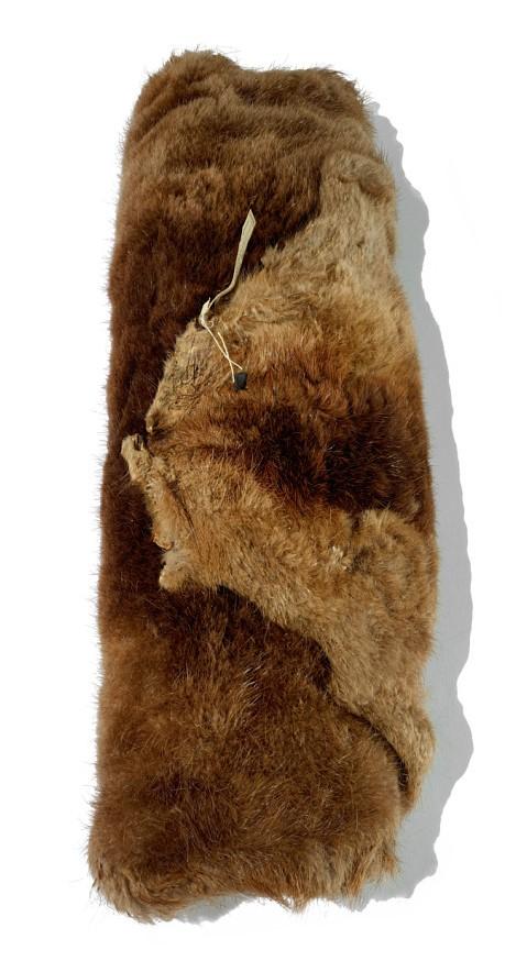 Rolled beaver fur