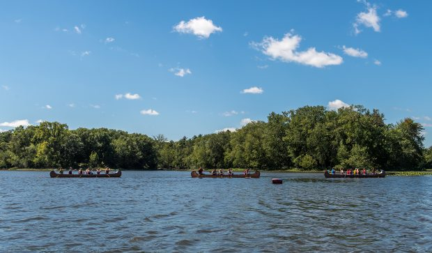 Colour photograph of a line of three canoes on a river. There are people in the canoes. A lush wooded area can be seen on the shore.