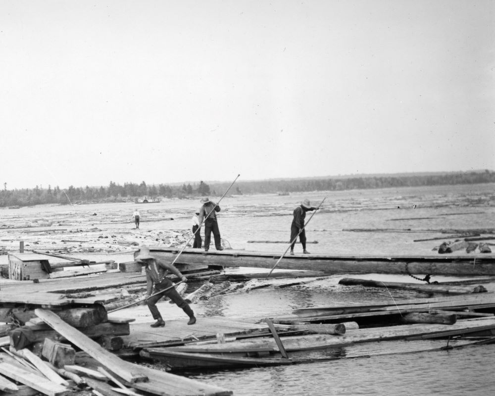 Men with long poles push logs into place at a sorting boom on the river.