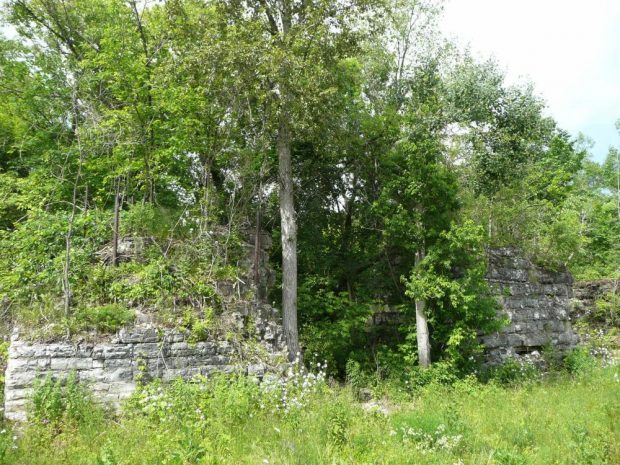 Trees and overgrown brush partially obscure stone foundations.