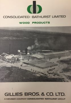 Front cover of a publication for Consolidated-Bathurst Limited Wood Products by Gillies Bros. Co. Limited which shows the mill, drying sheds and river beyond.