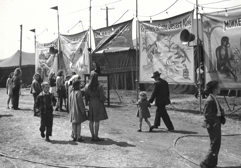 Black and white photo of people gathered around bannerline for an exotic animal sideshow featuring large painted banners with monkeys, reptiles and other animals with a person standing at a podium in the background